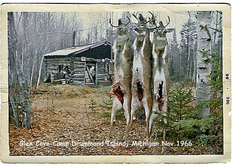 Historic Vintage Black and White Deer Camp Drummond Island Michigan